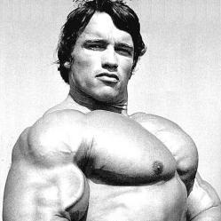 objem hrudníka, Arnold Schwarzeneger