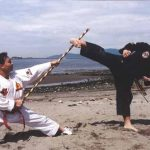 hapkido, bojový šport, bojové športy, sila, svaly