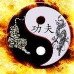bojové umenie, umenia, kung fu, ázijské